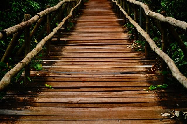 A Ponte UFMS